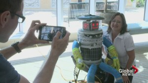 Hitchbot's 6000km journey ends in Victoria