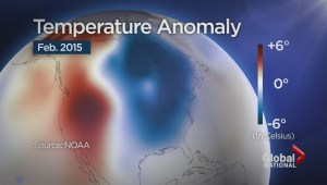 North Pacific mode linked to winter's weather extremes