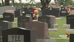 Voices of YQL: Cemetery tours a hit