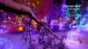 BC Evening Weather Forecast: Dec 21