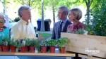 Herb Gardening 101 with Mark Cullen