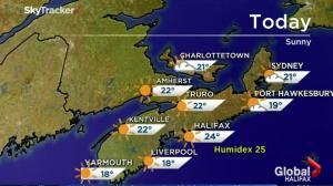 Global News Morning Forecast: June 24