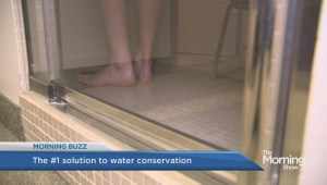 Would you pee in the shower to conserve water?