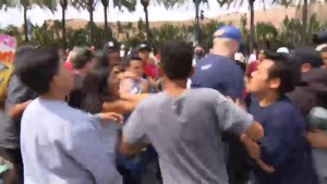Trump supporters, protesters clash amongst one another in California