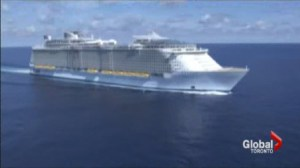 Newly  pregnant and boarding a cruise line: Hamilton woman denied boarding