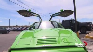 The Bricklin, a Canadian-born sports car, lives again