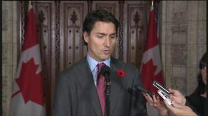 Trudeau calls Ottawa attack 'terrorism', seems to indicate support for Conservative spy legislation