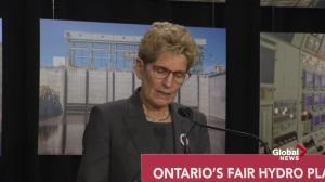Kathleen Wynne addresses 'the elephant in the room' on hydro