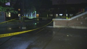 Double shooting in Pelham Park