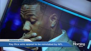 Ray Rice could return to NFL