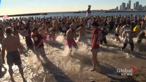 Hundreds take the icy plunge in Toronto Polar Bear Dip
