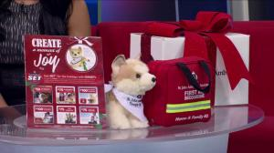 Month of Giving: St. John Ambulance therapy dog program