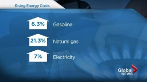 How the demand for energy increases cost of living