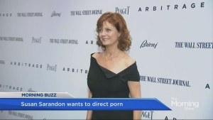 Susan Sarandon says she wants to get into directing porn