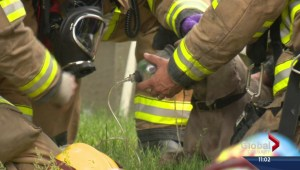 Heroic effort by firefighter to save man and two dogs