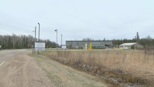 Four asylum seekers illegally cross border near Piney, Manitoba: Officials