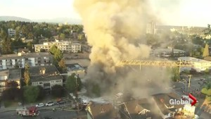 Two businesses destroyed in overnight New Westminster fire