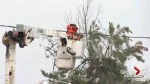 Storm leaves thousands without power