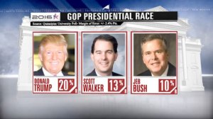 Donald Trump leads GOP nomination for White House: poll
