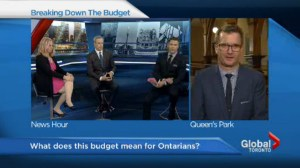 Expert panel examines the 2015 Ontario provincial budget