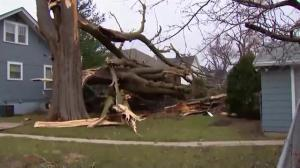 Parts of the U.S. hammered with tornadoes, powerful storms