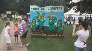 Taber Cornfest underway in southern Alberta