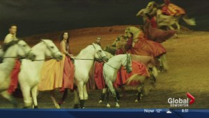 "Cavalia returns to Edmonton with ""Odysseo"""