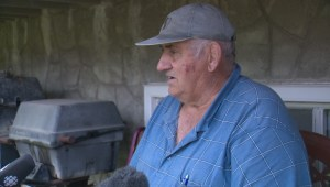 Raw: Accused animal abuser Ottavio Marchesan