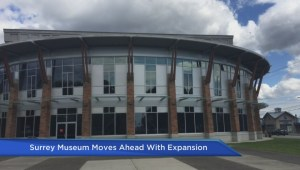 Surrey Museum moves ahead with expansion