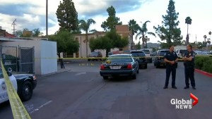 Police say San Diego man shot, killed 'rapidly' pulled object from pants