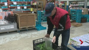 Report shows food bank users rise sharply in Alberta