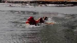 Firefighters rescue of dog from icy lake caught on camera