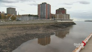 Saint John harbour cleanup helps environment