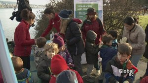 Kindergarten kids help with the Great Canadian Shoreline Cleanup