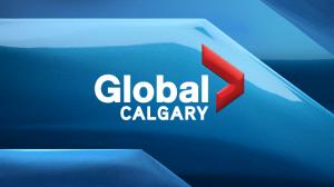 Calgary boy works as runner for Calgary Flames during 2016 NHL Draft