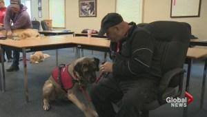 """Tru"" helping PTSD patient Sonny Wicks move forward"