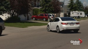 Calgary driver hit while turning into her own driveway found at fault