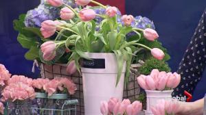 Fresh ideas for spring flowers with Fleurs de Villes