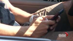 Distracted Driving: Justice minister open to discussing criminalization