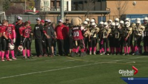 Calgary Bantam Football League goes pink to support cancer society