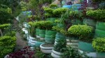 Garbage dump converted into eco-friendly garden in Brazil