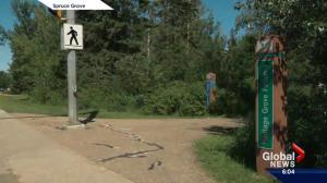 RCMP hunt for suspect after jogger sexually assaulted in Spruce Grove