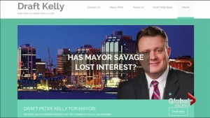 Residents split on campaign urging Peter Kelly to run for Halifax mayor again