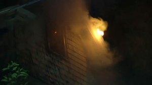 8 firefighters injured while battling massive fire; find alligator in bathtub