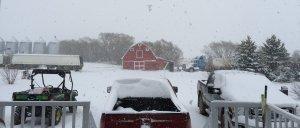 Saskatoon weather outlook: winter wonderland of snow blankets Sask.