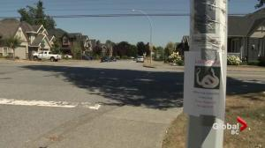Snake on loose in Surrey