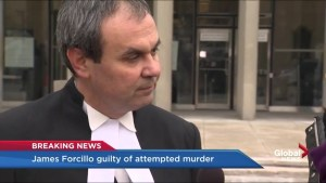 Lawyer Boris Bytensky delves into legal reasoning for attempted murder verdict
