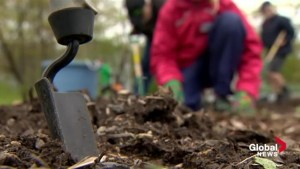 Dartmouth community farm expanding to help combat food insecurity