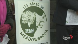 Battle over Meadowbrook green space