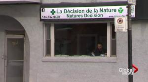 EXCLUSIVE: Prescription pot in Montreal